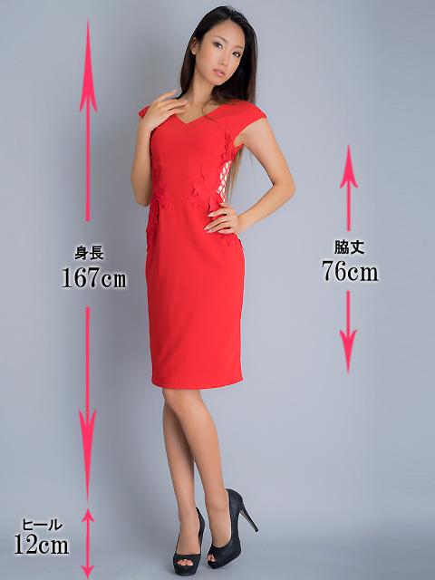 画像5: 【SALE品のため返品不可】[ERUKEI]チェック柄×ケミカルレース・フレンチスリーブ・タイト・ミディアムドレス・ワンピース